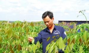 Anh Trịnh Văn Hạnh bên vườn giống chuẩn bị cho mùa tái canh mới.