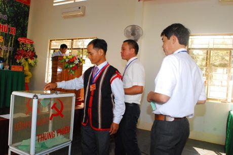 Các đại biểu tiến hành bầu các chức danh