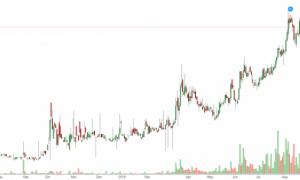 Giá cổ phiếu GVR trong vòng 1 năm qua.